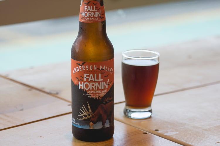 fall hornin