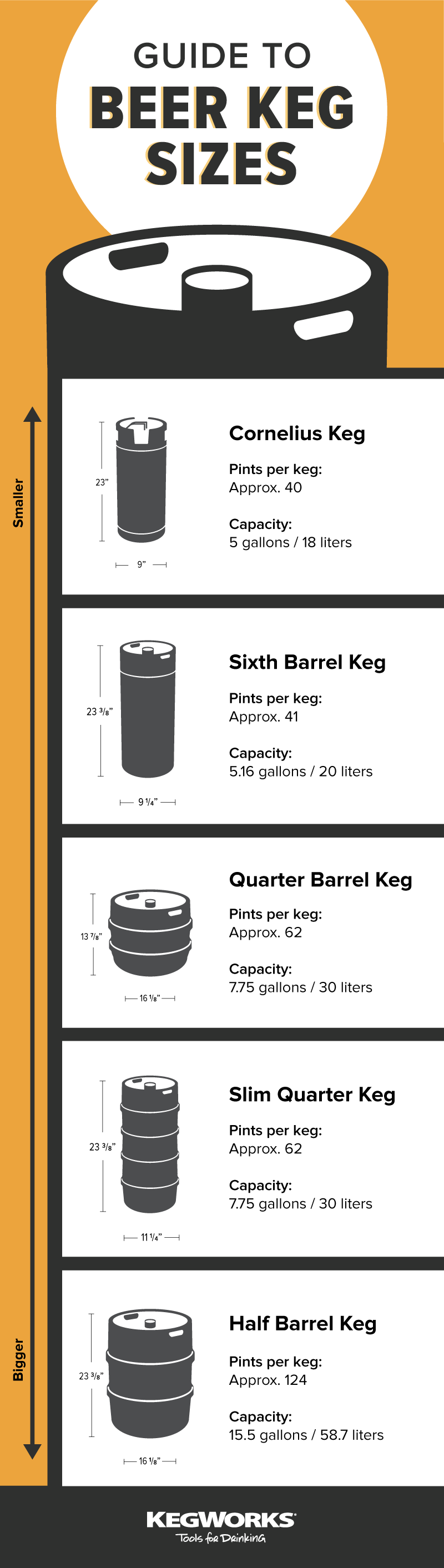Keg Size Infographic