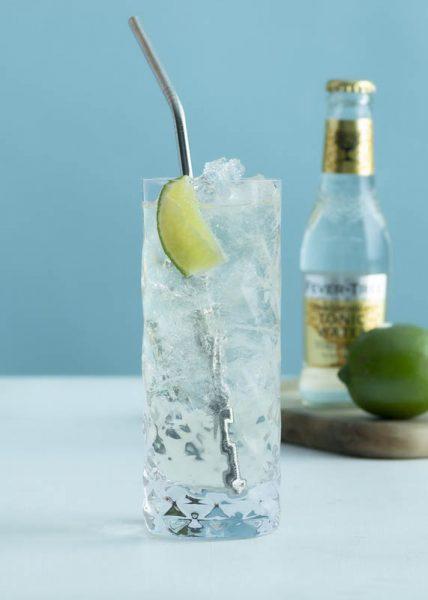 non-alcoholic gin & tonic