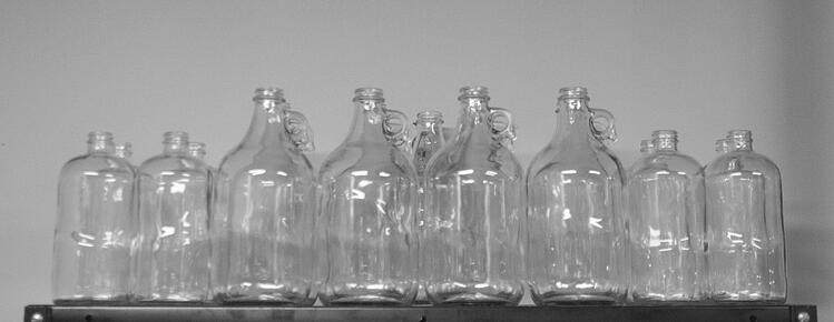 kombucha bottles growlers